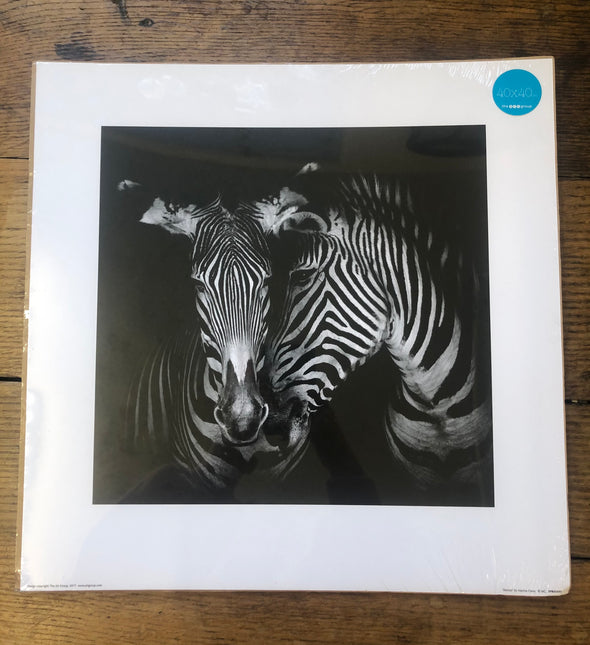 The Art Group Zebra Print without frame