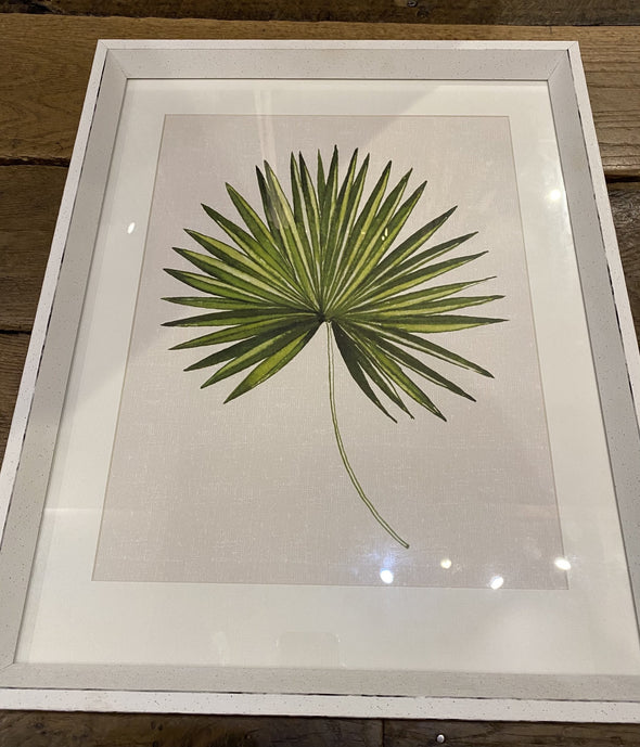 The Art Group Leaf Framed Picture