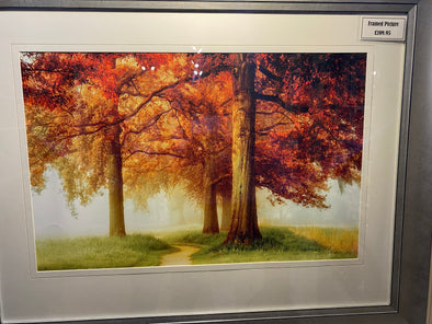 The Art Group Autumn Tree Framed Picture