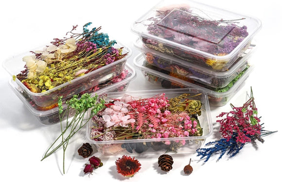 Dried flowers box