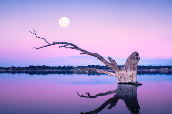 The moon rises at Lake Bonney, South Australia