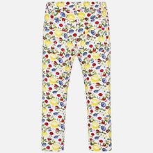 Load image into Gallery viewer, Girls Patterned Jeggings - Size 2T