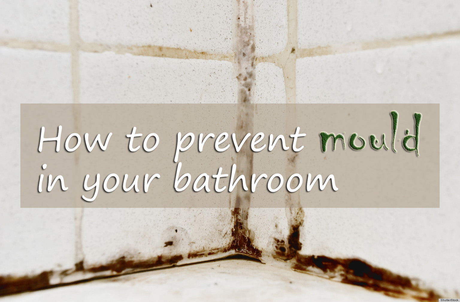 Prevent Mould In Bathrooms