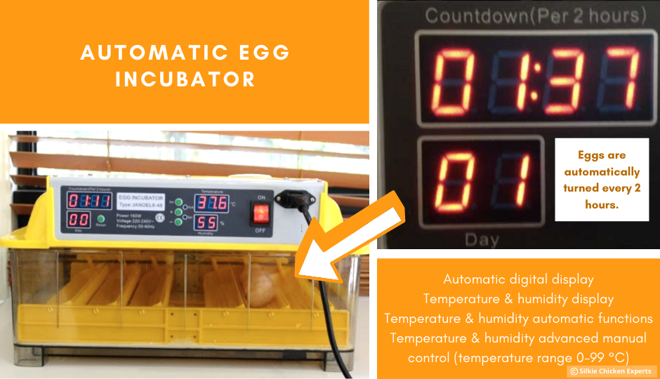 automatic incubator for silkie chicken eggs