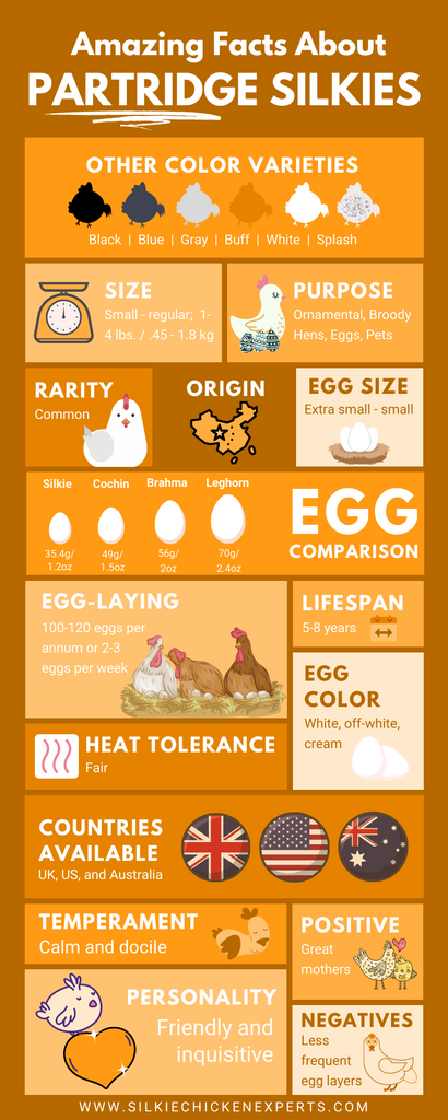 facts about partridge silkie chicken infographic