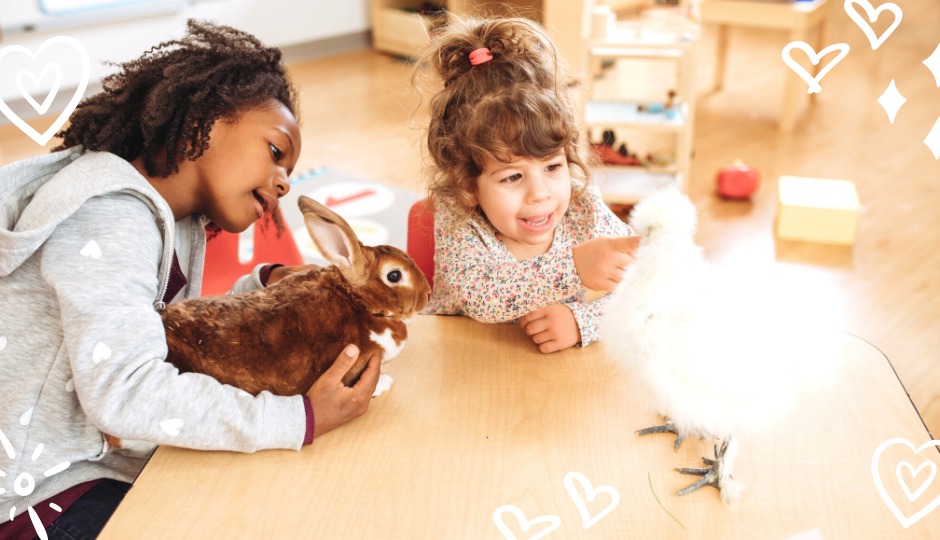 Little girls playing with a brown rabbit and a white silkie chicken