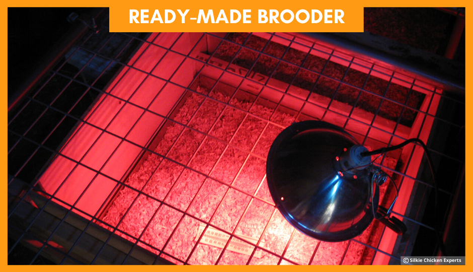 ready made brooder for baby silkie chickens