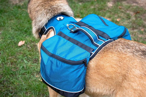 Canadian Canine Gear Traverse Day Pack - Backwoods Dog