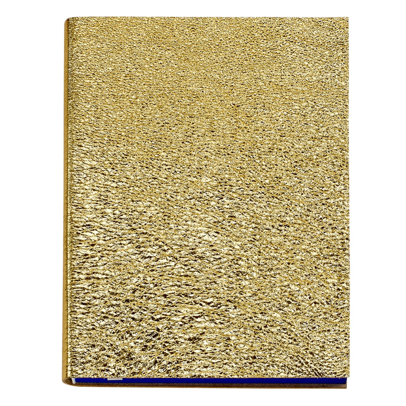 Large Sketchwrite Journal