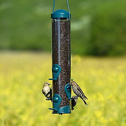 Perky-Pet® Wild Bird and Finch Feeder - 1.8 lb Seed Capacity