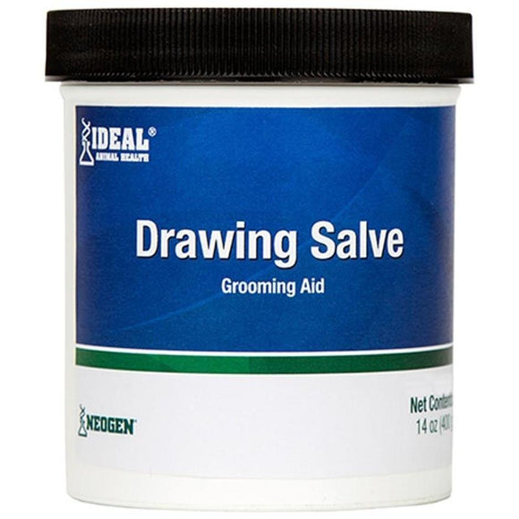 SQUIRE ICHTHAMMOL DRAWING SALVE GROOMING AID