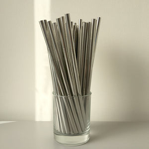 Silver Stainless Steel Reusable Smoothie Straw - Ecostraws