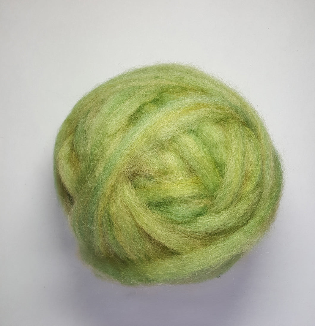 Coopworth Roving Spring Green