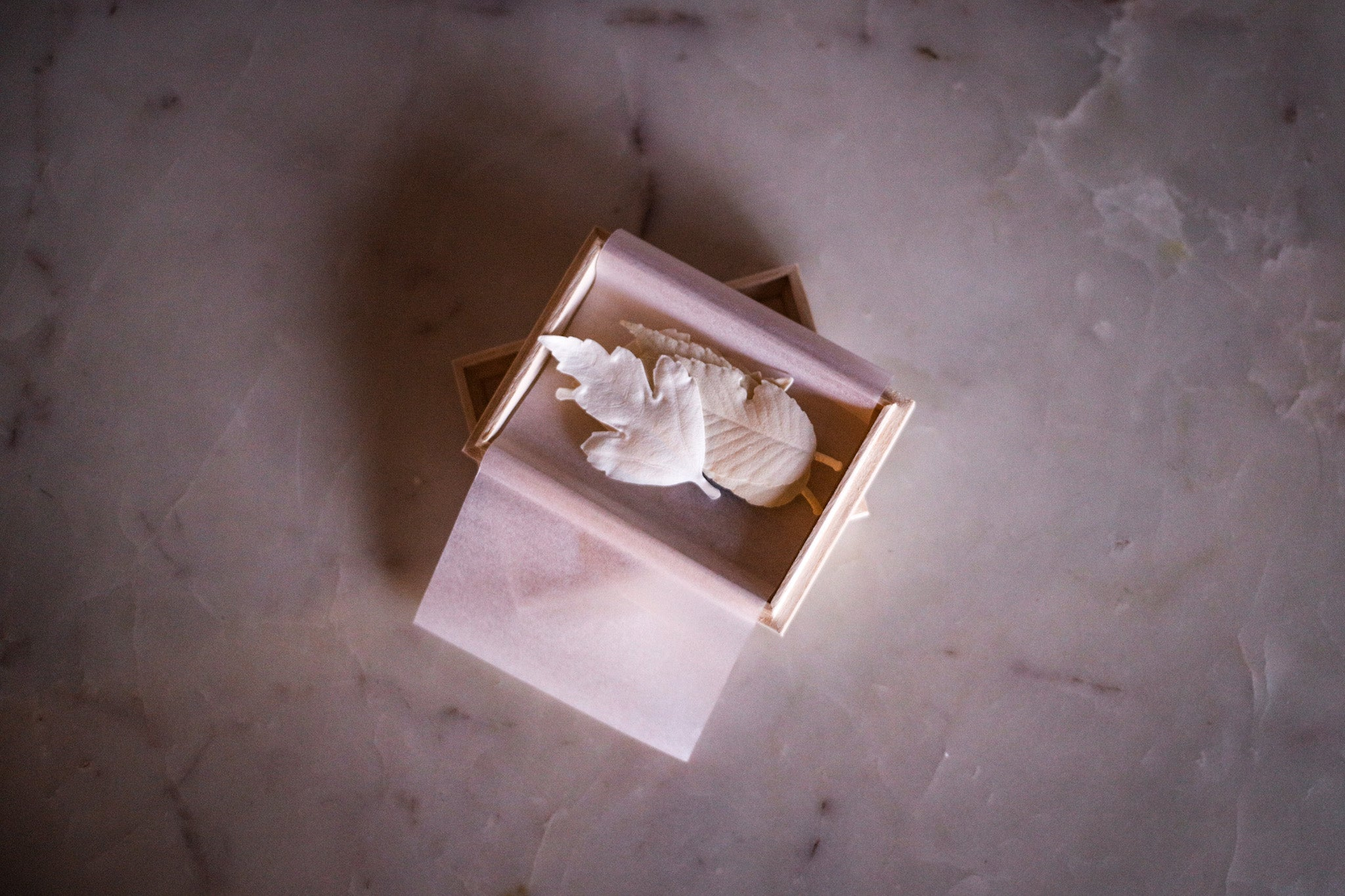 Three white leaves inside of a small box on a marble table