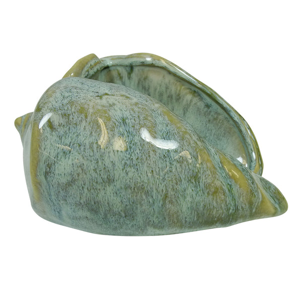 Cowrie Shell Decor - Falling For Willow