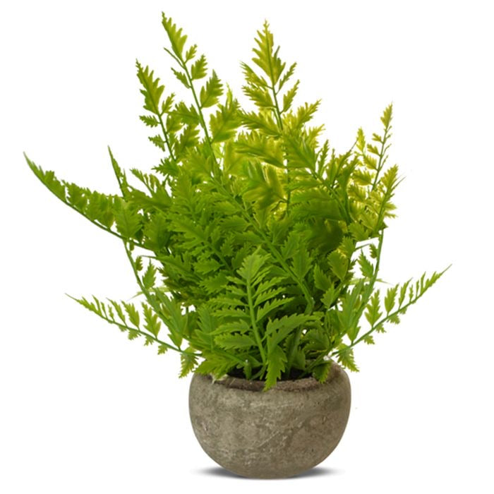 Faux Potted Fern - Falling For Willow