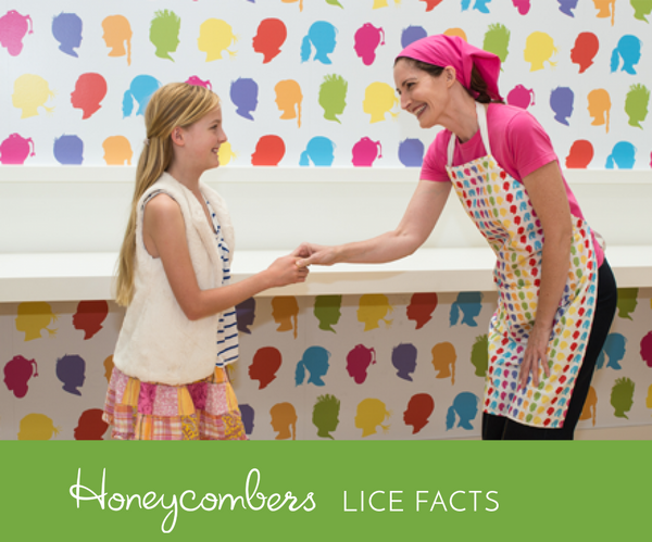 Lice Facts