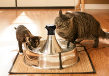 Load image into Gallery viewer, Drinkwell® 360 Stainless Steel Pet Fountain