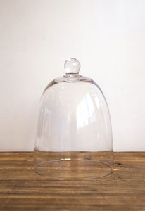 DOME GLASS CLOCHE