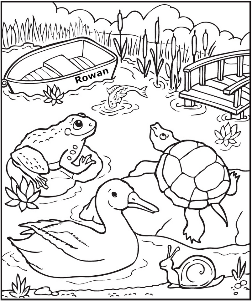 Free Coloring Pages Pond Animals : Personalized down at the pond coloring page frecklebox