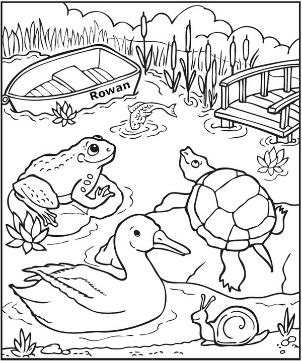 Down at the Pond Coloring Page - frecklebox