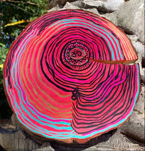 Load image into Gallery viewer, Natural wood slice wall hanging with acrylic paint