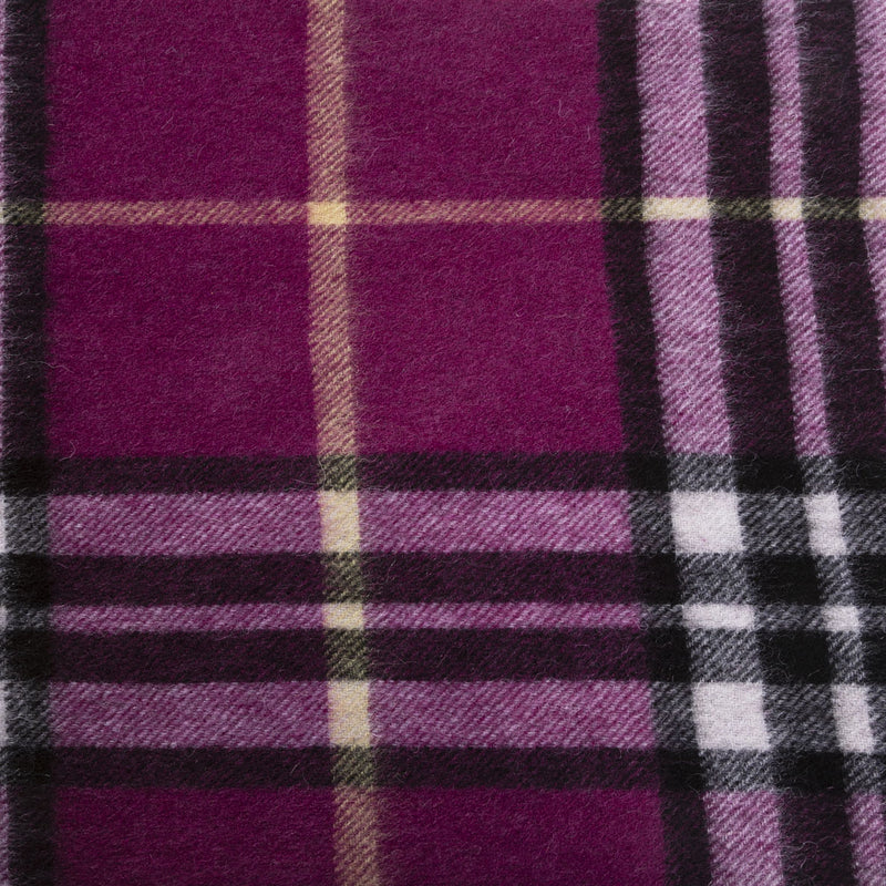 Edinburgh 100% Lambswool Tartan Scarf Enlarged Off Ctr Scotty Thom Raspberry