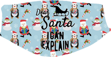 Cargar imagen en el visor de la galería, Christmas - Santa, I Can Explain Face Cover- Custom With Your Name, 2 layer pocket mask with filter, adjustable ear clip, personalized & washable, reusable