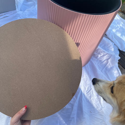 Kmart Ottoman with Cushion cover removed, exposed timber cover and dog nose