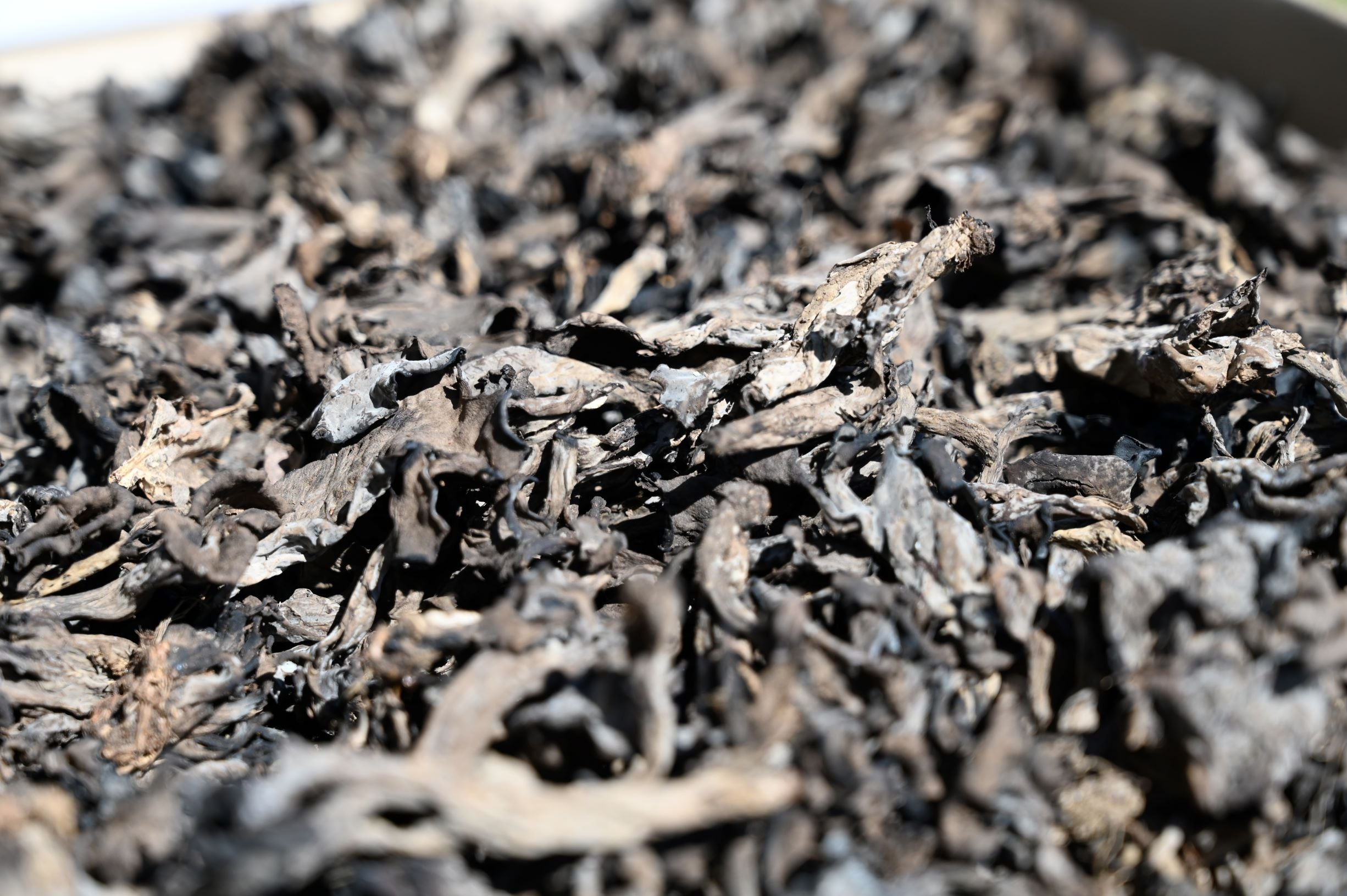 Dried Black Trumpets 50g
