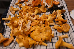 Dried Chantrelles 50g