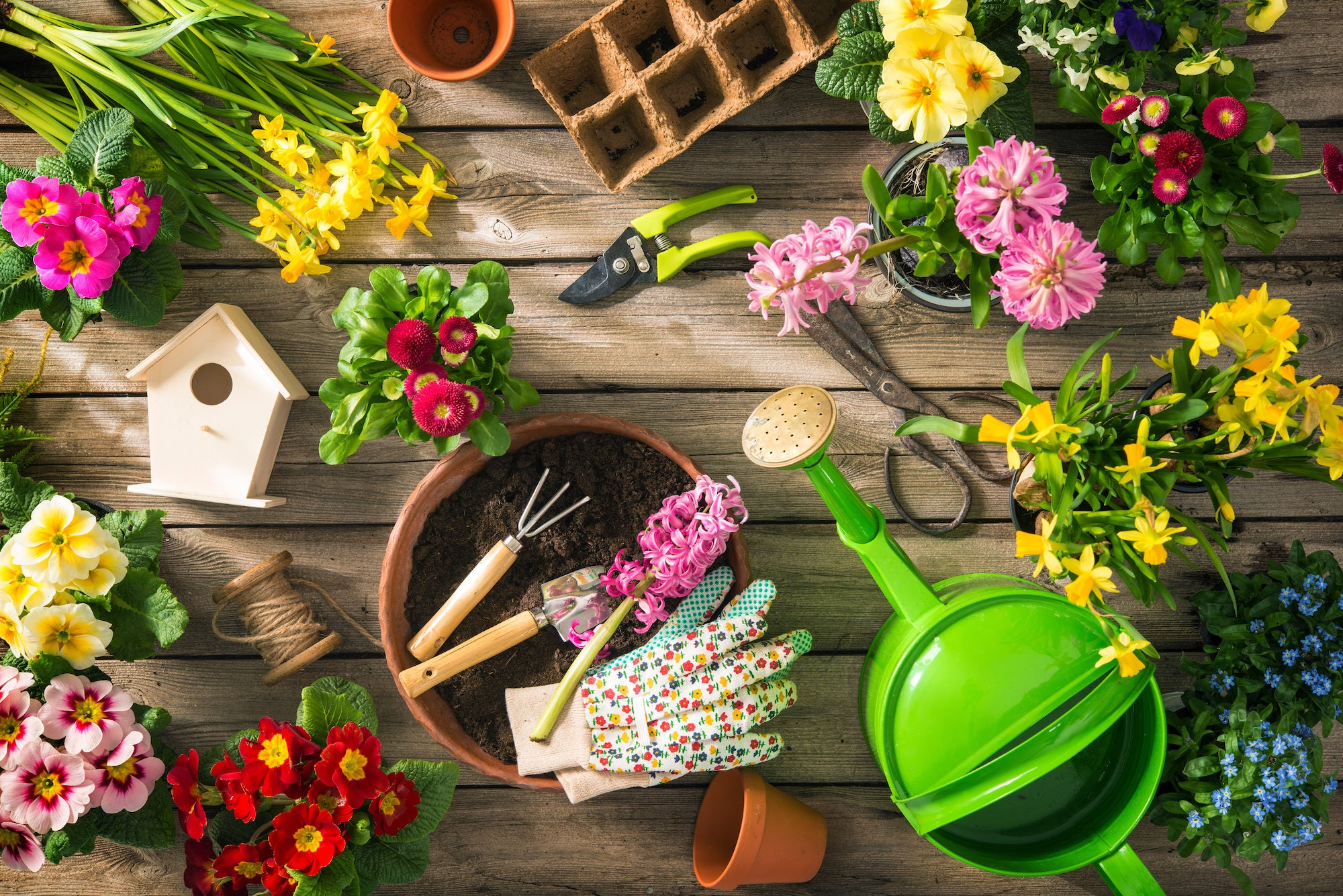 Useful Gardening Tools