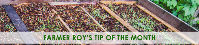 Farmer Roy's Tip of the Month