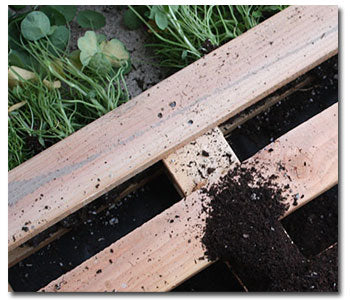 Caring and Placement of Your Pallet Garden