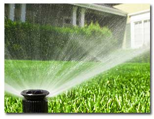 Check Your Sprinklers