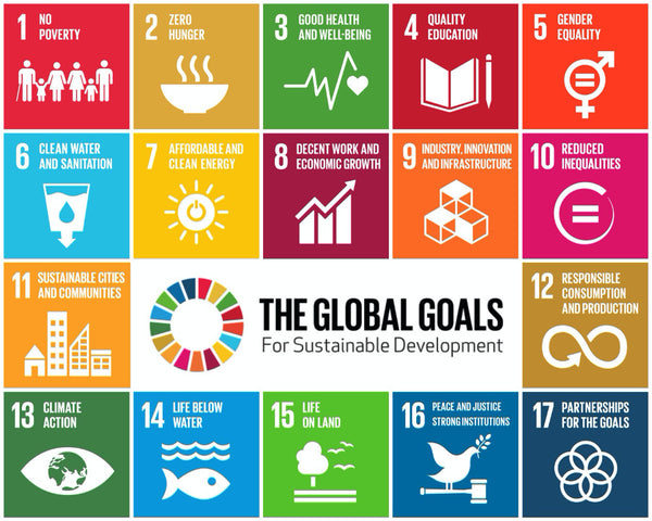 The Global Sustainability Goals