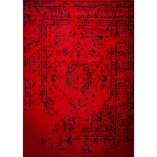 Jaime Red Area Rug 3 ft. by 5 ft.