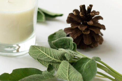 """sage & Pine """"rejuvenate"""" aromatherapy candle and massage candles for sale at www.wicksandreeds.com"""