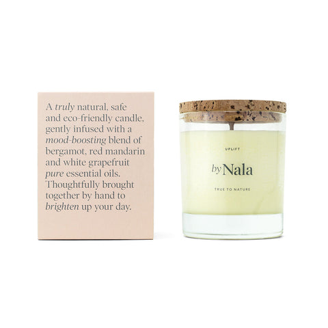 Large aromatherapy candle - soy wax candles & best aromatherapy candles for sale at www.wicksandreeds.com