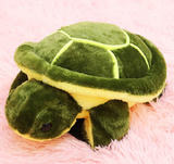 Turtle Butt Cover