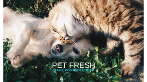 2Pure Products Pet Odour Eliminator Range Pet Fresh