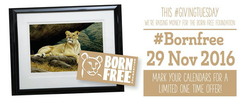 This #GivingTuesday we're giving to The #Bornfree Foundation