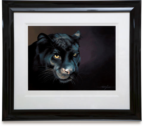 Stealth (Black Leopard)