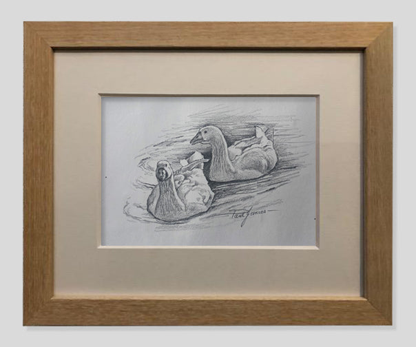 Swimming Geese - Framed Pencil Sketch