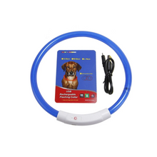 Load image into Gallery viewer, LED Dog Collar (2) - pugandhoney.com