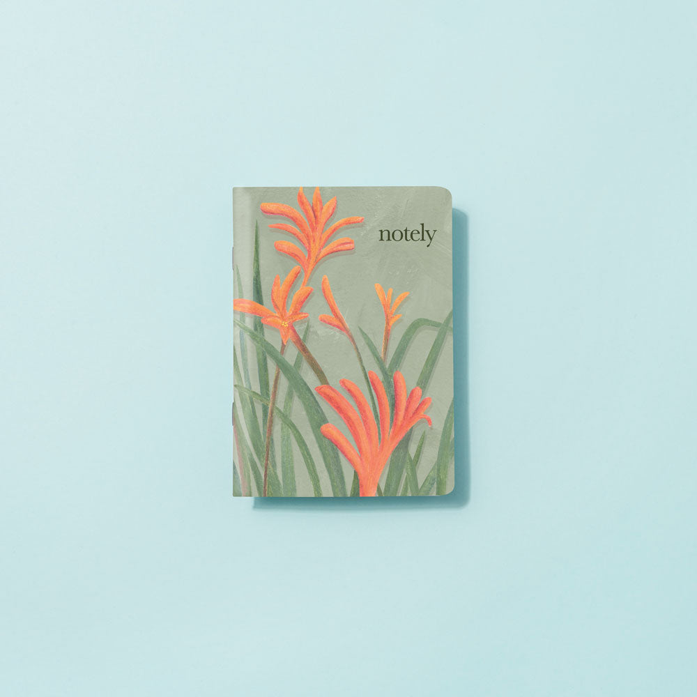 Notely Kangaroo Paw Illustrated Pocket Notebook