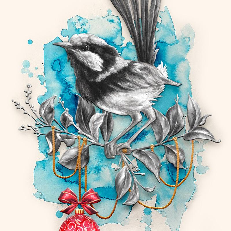 Alex Louisa Fairywren Card Set (Box of 10)