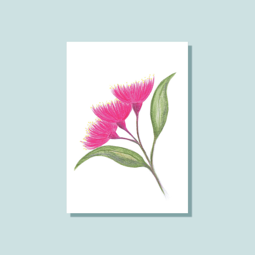 Notely Gift Cards Eucalyptus Blossom