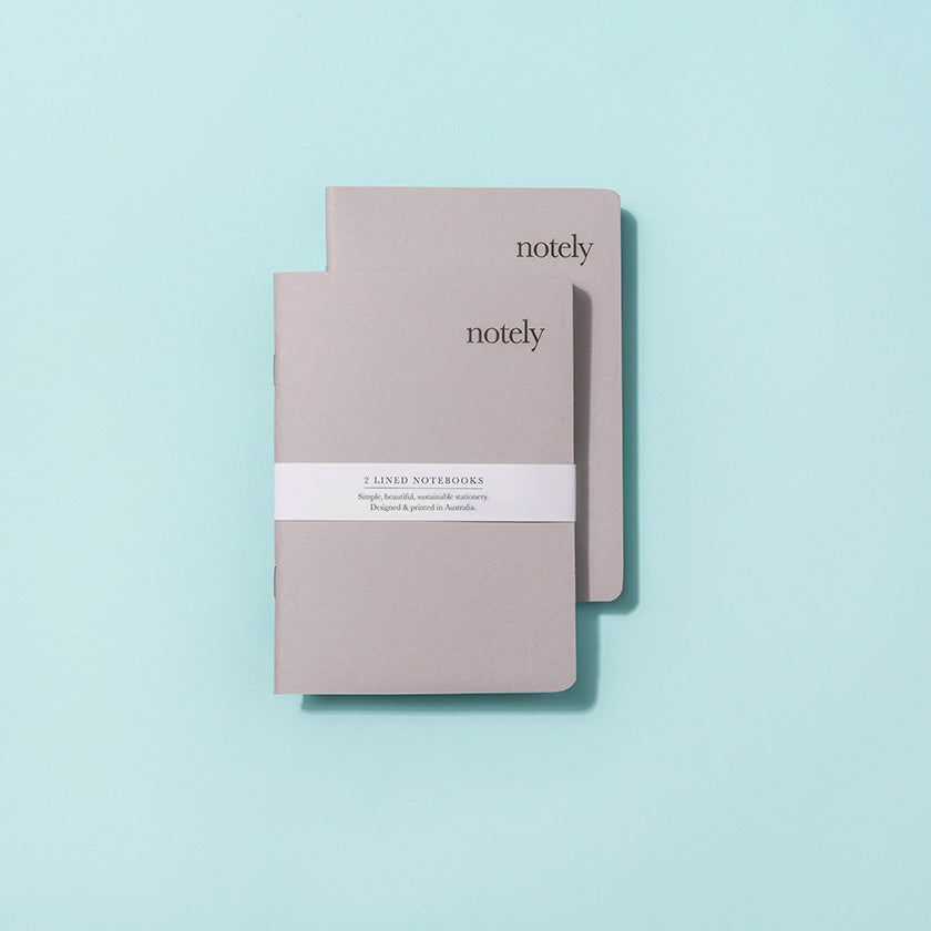Light Grey - A6 Pocket Notebook (Set of 2)
