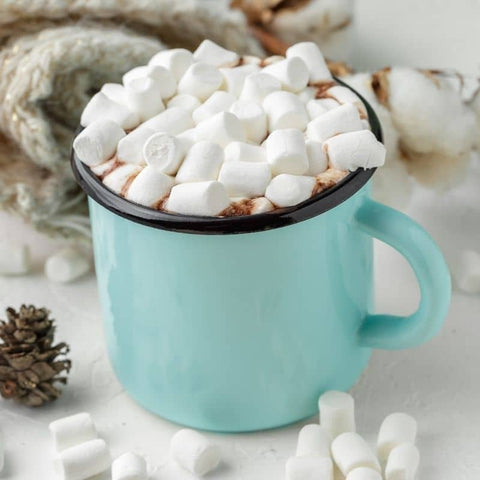 hot cocoa scented wax melts